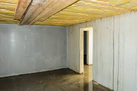 basement with a wet floor