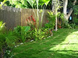 Small Picture Bamboo Garden Design Landscape Bamboo Garden Design With Bamboo In