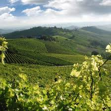 happy in tuscany tour experience in