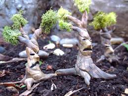 charming outdoor garden decor  charming miniature fairy garden decorations