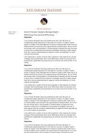 Senior Principal Category Manager Digital Resume samples
