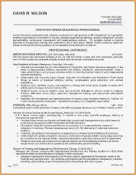 Resume Profile SummaryFree Professional Resume Templates Download Amazing Resume Profile Summary Download Resume Best Human Resource Resume