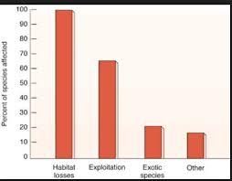 Giant Panda Population Chart Endangered Species