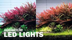 Aquascape Color Changing Lights Different Led Lights On Our Aquascape Aquarium Lighting For Your Aquarium Plants