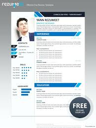 Free Professional Resume Templates Fascinating Template Professional Resume Resume Template Gray Professional