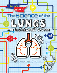 Respiratory System Flow Chart The Science Of The Lungs And Respiratory System Flowchart