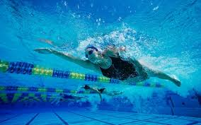olympic swimming pool underwater. Contemporary Pool Woman Swimming Underwater In Olympic Swimming Pool Underwater