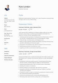 Veterinary Resumes 10 11 Vet Assistant Resume Example Loginnelkriver Com