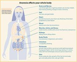 best therapy feeding and eating disorders images  anorexia and the body