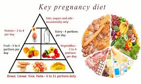 Pregnant Mother Diet Chart Diet For 4th Month Of Pregnancy