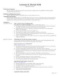 Resume Headings Format Cv Header Yralaska Com