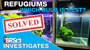 Ufo Grow Light Refugium Whats The Best Refugium Light To Use If You Have A Large