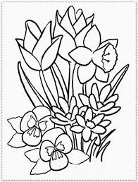 Flowers Coloring Pages Print Spring Flowers Coloring Pages