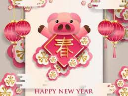 Chinese Birth Year Signs Chart Chinese Horoscope 2019 Year Of The Earth Pig