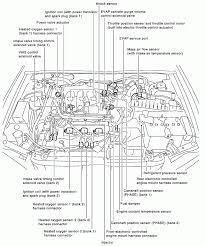 Infiniti g35 engine diagram dodge magnum wiring harness infiniti o2 sensor impala symbols symbols
