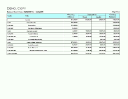 sample balance sheet for non profit non profit balance sheet template excel haisume