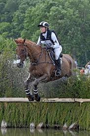 27 best mountain horse team riders images on