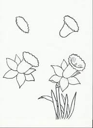 Small Picture how to draw flowers calla lily art lesson drawing page early
