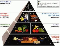 New Fda Food Chart Old And New Food Pyramid Information And Pictures Disabled