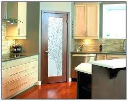 kitchen pantry door ideas frosted glass unique i