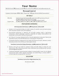 Financial Services Resume Financial Services Resume Template Elegant Resume Template Download