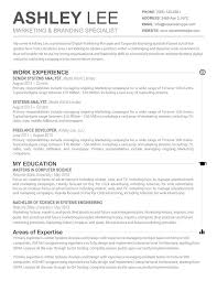 Perfect Resume Template Word Word Professional Resume Template