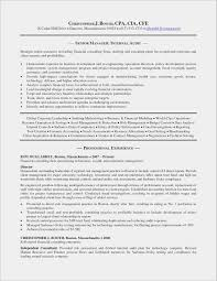 Financial Statement Cover Letter Financial Statement For Business Plan And Church Security