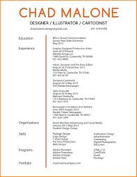 Example Of Graphic Design Cv Design Cv Examples