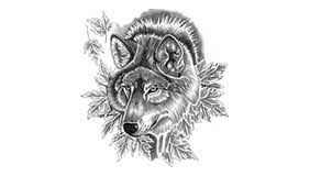 Resultado de imagen para tatuaje lobo