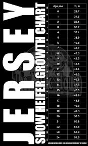 Jersey Calf Weight Chart Jersey Heifer Growth Chart The Bullvine The Dairy