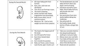 Prenatal Chart Pdf Prenatal Development Child Development
