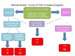 Article With Chart Italian Definite And Indefinite Articles Flow Charts