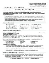 Great Examples Of Resumes