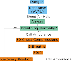 First Aid Procedure Flow Chart First Aid For Younger People Drab