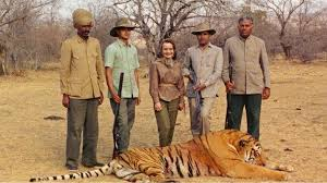 image caption ruth shaw brought home the skin of the 200th tiger killed by the maharaja