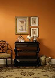 champagne paint colorOrange Paint For Walls  alternatuxcom