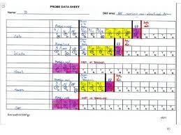 skills tracking sheet 1 a description of performance management data based decision