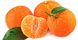 Here Are The 7 Health Benefits of Tangerine Fruits You Might Not Know –  Daily Advent Nigeria