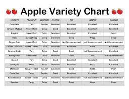 Apple Variety Chart Tastingthefitlife