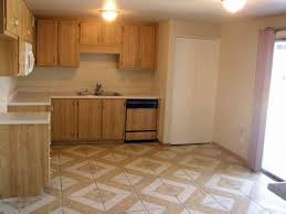 Types Of Flooring For Kitchens Kitchen Famous Types Of Kitchen Floor Types Kitchen Ideas Kitchen
