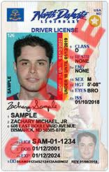 Current Nddot Id Non And Drivers - License Driver