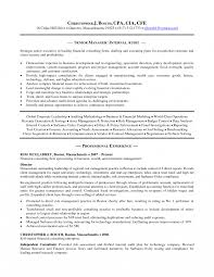 Internal Resume Sample Audit Senior Auditor Resumes