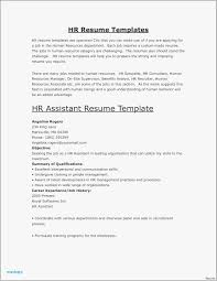 Resume Template Entry Level