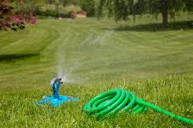 1 garden hose. Our 1 Garden Hose