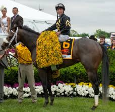 2013 Belmont Stakes Results Chart Oxbow Horse Wikipedia
