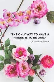 10 Cute Friendship Quotes Short Sayings About Friendship