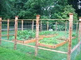 vegetable garden fence en wire fence for garden en wire garden fence wire garden fencing gardening