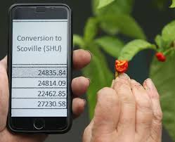 Pepper Scoville Unit Chart The Worlds New Hottest Pepper Is So Hot It Stops You From