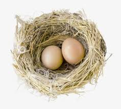 bird eggs clipart. Delighful Bird Birdu0027s Nest Eggs Egg Nest PNG Image And Clipart On Bird Eggs G