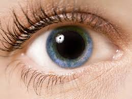 Stress Pupil Dilation Could Reflect The Amount Of Stress